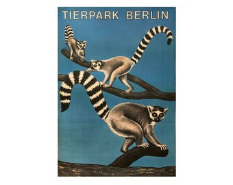 SALE 10% OFF Original Vintage Zoo Poster. Berlin. Germany. Tierpark. Ring-tailed lemur. Advertising Poster. 2017-054
