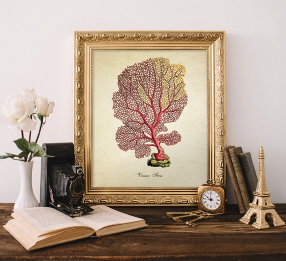 antique botanical print coral print vintage home decor vintage reproduction kitchen decor tray handmade in italy