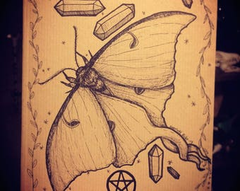 Moth Magick Journal - Hand Illustrated