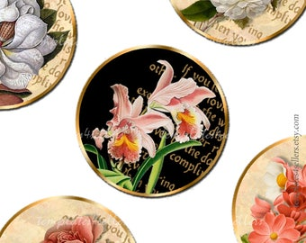 Digital Collage Sheet  Vintage Flowers 1 inch round images Scrapbooking Pendants Printable Original  Printable 4x6 inch sheet 410
