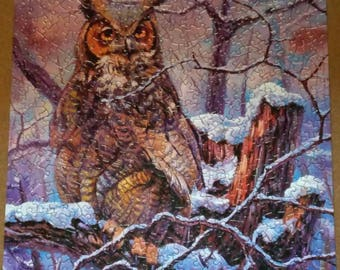 Owl puzzle picture/ unframed