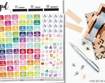Pregnancy Stickers - Planner Stickers - FS113