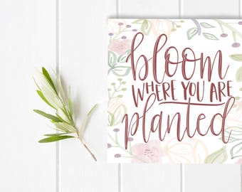 Bloom Where You Are Planted Hand lettered home art, print, floral typography gift, holiday, bedroom home decor, card, mom sister friend dad