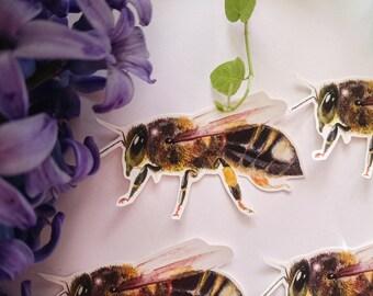 Vinyl Bee sticker, Laptop stickers, Original stickers, Cute stickers, Bees, Honeybees, Save the bees, Favors, Pollen Bee, Die cut