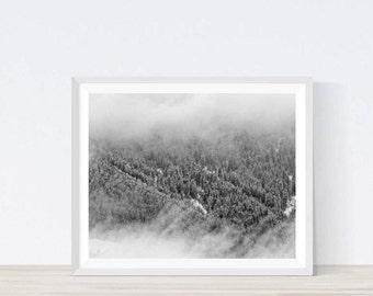 Winter photography, winter landscape, winter forest, winter landscape, scandinavian print, modern wall art, landscape photo, #L14