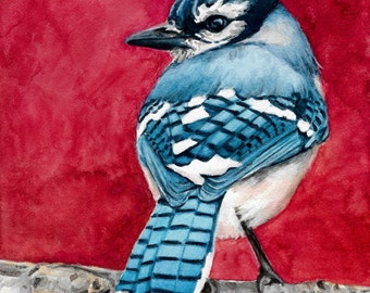 Blue Jay painting, Watercolor Blue jay, Blue and Red watercolor, Bluejay print , Blue Bird watercolor, Blue bird painting, blue jay print,
