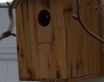 Cedar bird house 6x8x6