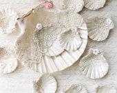 SALE ~ Sea Shell Collection, Shabby Chic Shells, Summer Wedding Sea Shell, Sea Shell Table Decor, Lace Covered Sea Shells