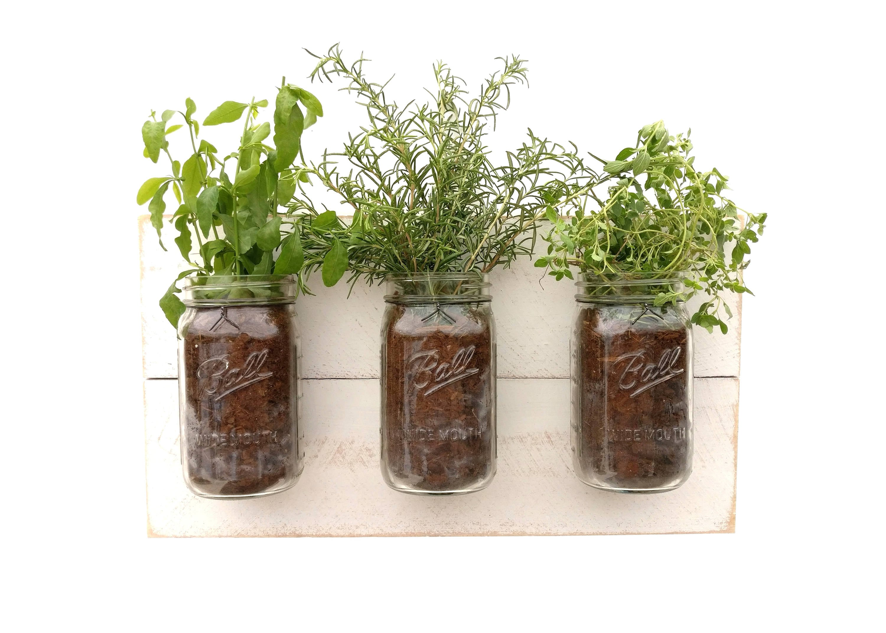 Herb Planter Shabby Chic Herb Planter Hanging Planter White Indoor Herb