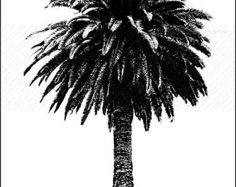 Palm Tree wall art, print of palm tree, black and white palm tree art
