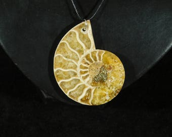 A Beautiful 200 Million Year Old Ammonite Fossil Made into a Pendant 8.61