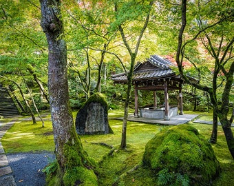 Japan Photography, Kyoto Temple, Landscape Photography, Gallery Wall Art, Japanese Style, Travel Photography, Beautiful Japan, Green