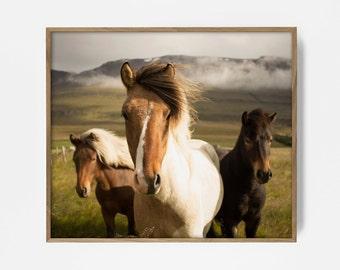 nordic horse print, horse art, Scandinavian horses, horse wall art, nordic art, nordic print, horses print, horse art, printable horse