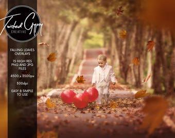 Falling Leaves Overlays + Bonus autumn/fall lighting!
