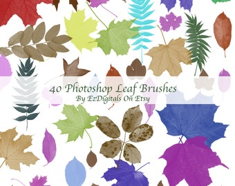 Photoshop leaf brushes, photoshop brush set, photoshop leaves, Leaves, leaf, Brushes,