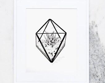 Diamond Terrarium Art Print, Art Prints, Succulent, Plant Prints, Terrarium Prints, Succulent Terrarium, USA, Plant Lover Print, Garden