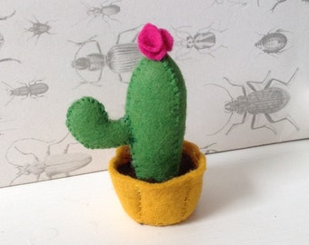 Mini cactus (8cm) with flower - one supplied