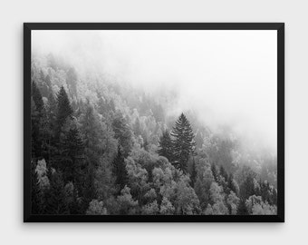 Forest Print Art | Forest Print, Nature Prints, Landscape Prints, Digital Landscape, Nature Decor, Nature Home Decor, Nature Poster, Nature