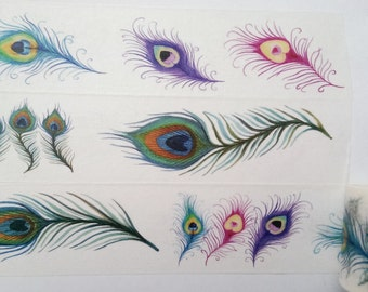 Design Washi tape Peacock feather bird