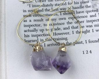 Gold Dipped Amethyst Dangle Earrings