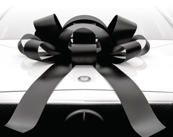 Big Car Bow with Magnetic Backing Available in 9 Colors (30in)