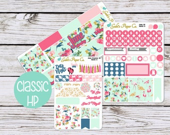 HP Monthly Planner Stickers June for your Happy Planner, {HPClassic June}