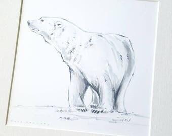 Polar bear (original drawing)