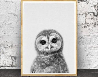 Owl Print, Woodlands Nursery, Woodlands Owl, Owl WallArt, Modern Minimal, Black and White Animal, Printable Owl, Kids Room Decor, Nursery
