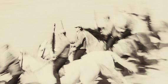 ANDALUCIAN HORSE ART 1. Spanish Horses, Equestrian Print, Equine Art, Photographic Print, Sepia Tone, Galloping Horses, Spain