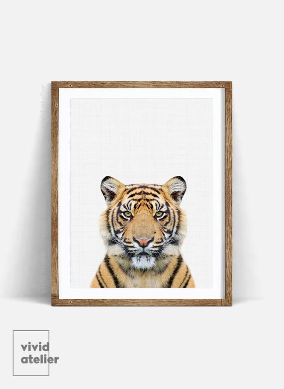 Tiger Print Nursery Animal Wall Art Tiger Wall Art Nursery