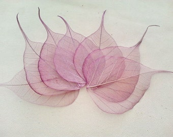 25,50,100 pcs. Purple BODHI leaf skeleton 6.0 x 8.5 cm. for scrapbooking,card making,wedding favor,art making,crafts project