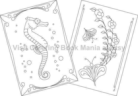 """NOTECARDS to COLOR, 5"""" x 7"""" cards with envelopes - 4 delightful Nature Themed cards - 2 each of 2 designs - Seahorse & Butterfly!"""