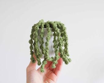 Crochet String of Pearls Plant