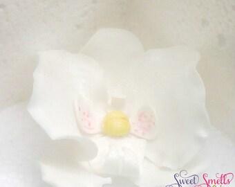 ONE phalaenopsis orchid, phalaenopsis orchids,  fondant phalaenopsis orchid, wedding cake topper,  sweet 16 cake topper, sugar flowers