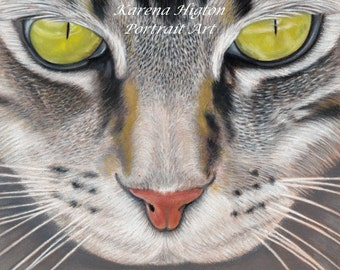 """Tabby Cat Pencil Portrait Print Mounted to fit 8""""x8"""" Frame by Karena Higton"""