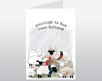 Scottish Greetings Card Sheep WWGR11