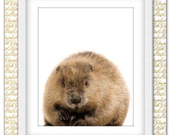 Beaver print, Beaver art, Beaver poster, Animal print, Animal art, Animal wall decor, Animal Decor, Animal poster, Animal Printable Decor