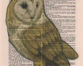 Barn Owl Art Print, Book Page Art, Print on Book Page, Book Page Illustration, Vintage Dictionary Art