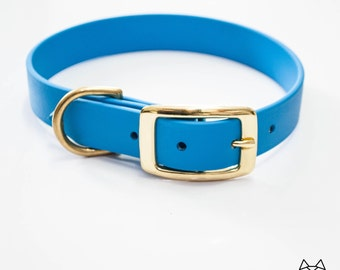 Waterproof Dog Collar in Bright Electric Blue