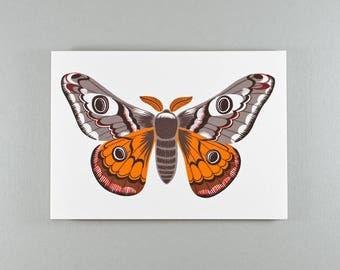 Notecard | Light Grey & Rust | Emperor Moth | Single card and envelope