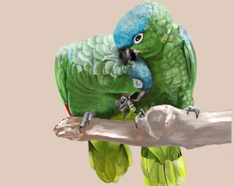 Fine Art Print - Parrots in Blue and Green