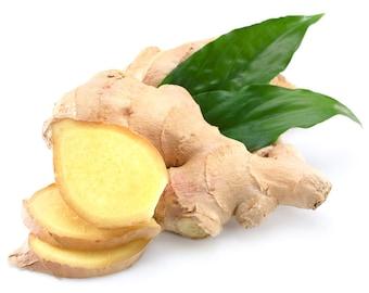 Ginger Organic Essential Oil | Daucus carota