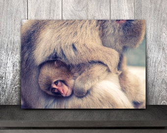 Monkey print,Snow monkey fine art photography,animal fine art print,animal baby art,art print,photo,winter wall art,artwork,print,décor,
