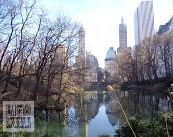 Central Park, NYC Photography