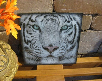 Laser Engraved Tiger Plaque