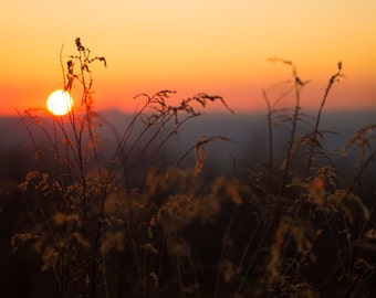 Field Photography, Landscape Photography, Sunset, Southwest Virginia Photography