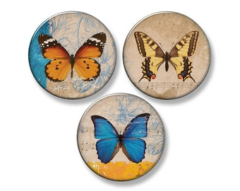 "BUTTERFLY Fridge Magnet Set - 3 Large 2.25"" Round Magnets (Set #1)"
