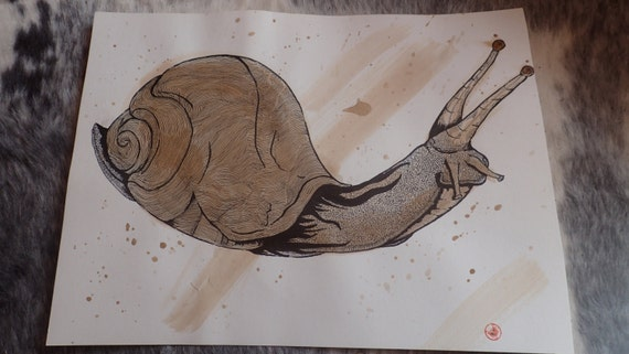 Stain Snail Landscape