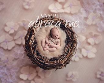 bird nest newborn digital background/newborn digital backdrop/instant download