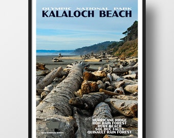 Olympic National Park Poster, olympic national park, national park print, national park poster, travel poster, Kalaloch Beach poster
